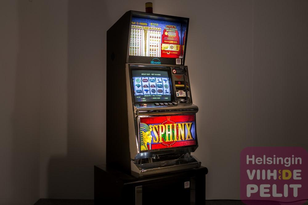 Wild joker casino website